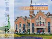 出售合肥南新滨湖旁边3室2厅2卫100平米67万住宅